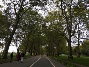 london nature11