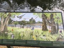 london nature6